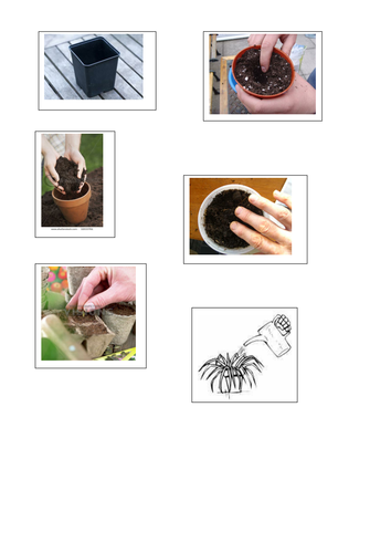 planting a seed instructions