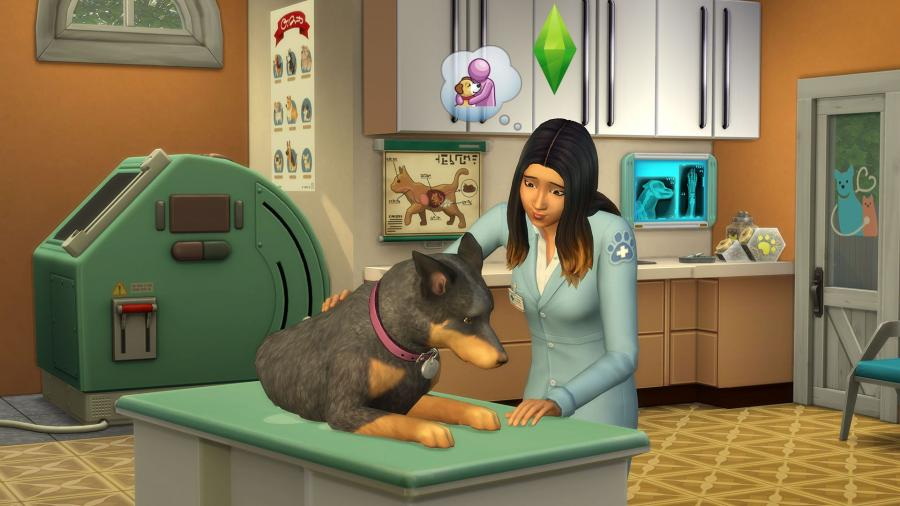 dauphong sims cats and dogs instructions