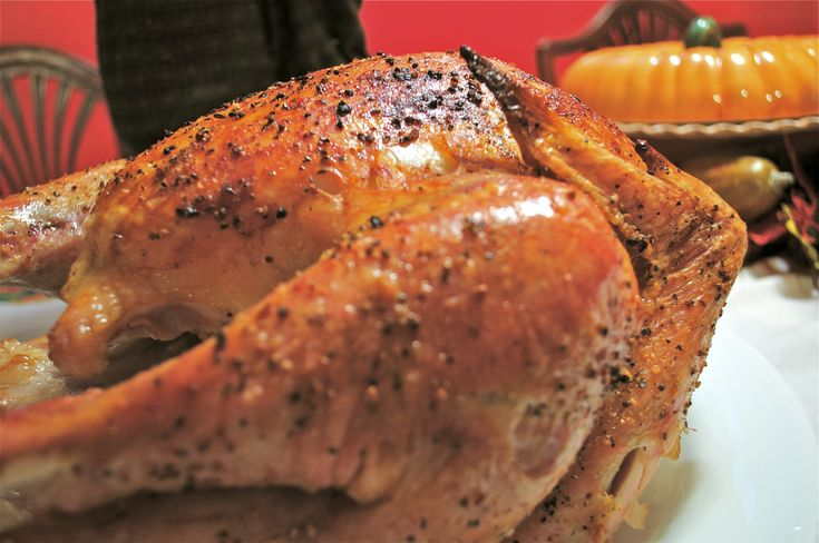 the big easy cooker turkey instructions