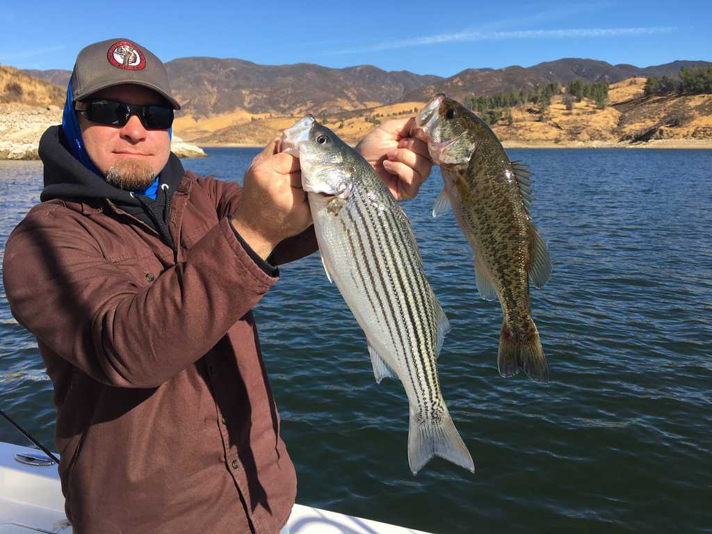 bass fishing instructional videos