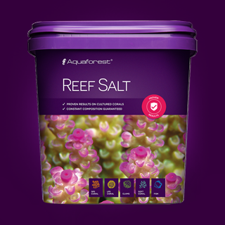 probiotic reef salt instructions